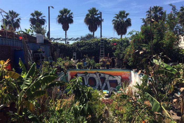 gangsta garden