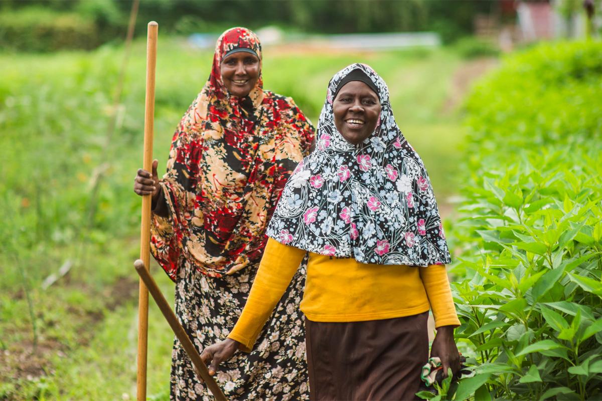Refugee farmers