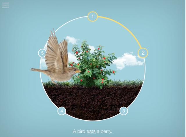 Bird screenshot from the soil app