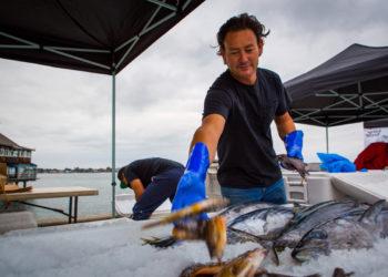 san diego fishermen