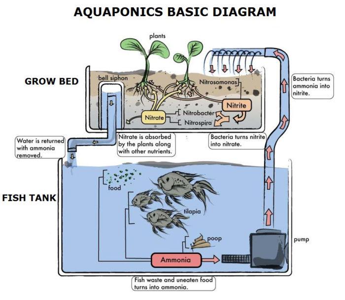 aquaponics farmers band together to set their industry apart civil Aquaponics Parts List
