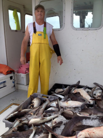 John Cuttle with part of a day's catch of dogfish.