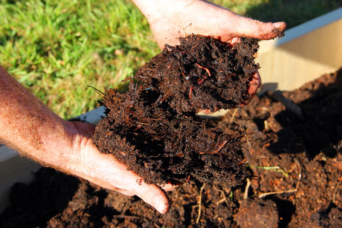 organic farming soil