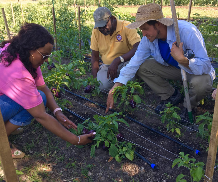 Justin Myers gives visiting farmers a hands-on tour of Hope Farms. (Photo © Recipe for Success Foundation.)
