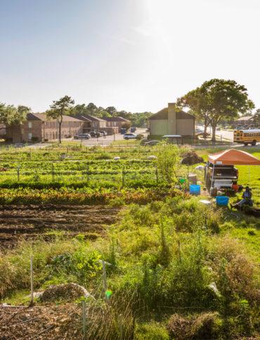 Plant it Forward Farms (Photo credit: Eric Kayne)