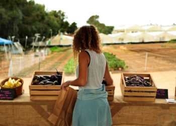 The pay-what-you-can farm stand at Coastal Roots Farm.