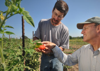Top photo: Oregon organic farmer Chris Roehm and USDA NRCS Basin Resource Conservationist Dean Moberg examine an organically-grown tomato at Square Peg Farms in Oregon. Photo by Ron Nichols.