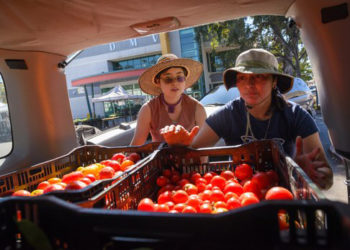 Miyuki Baker, left, and Nidia Castillo Lopez pack produce from the farmers market into their van. YES! photo by Federica Armstrong.