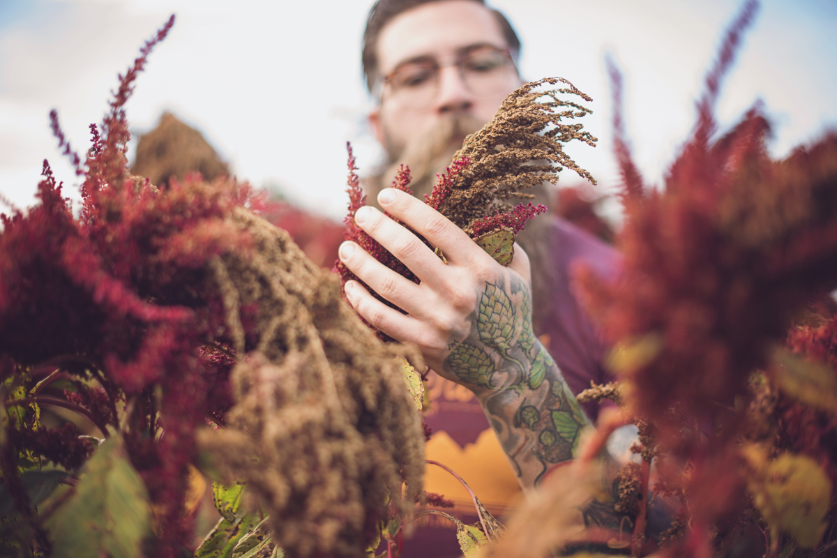 Foraged beer takes craft brewing back to the land civil eats for Take craft beer back