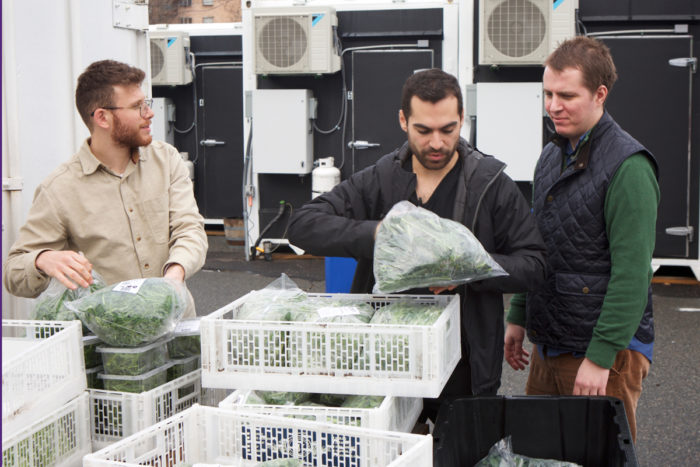 Matt Jozwiak (right), and Aron Pobereskin (center) collect donated greens from Square Roots.
