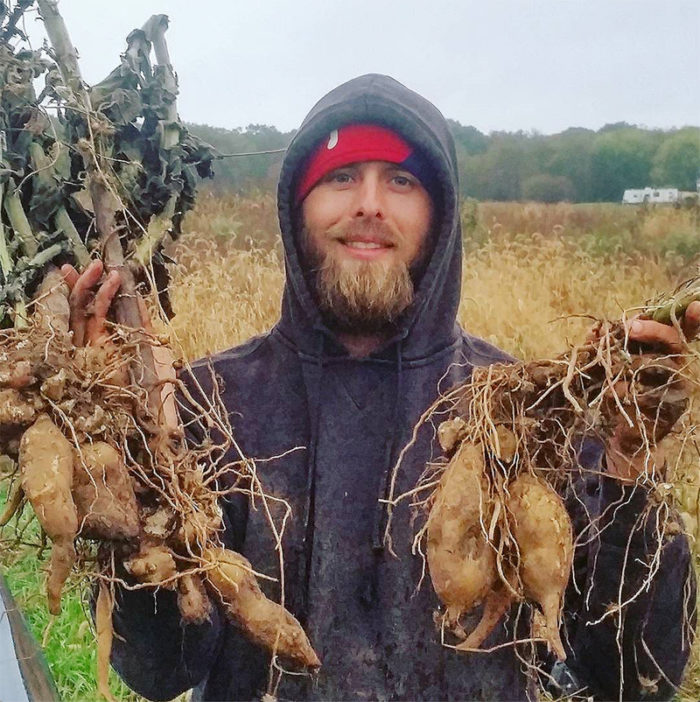 Dusty Hinz holding yacon tubers. (Photo courtesy of Experimental Farm Network)
