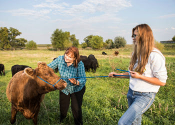 Kristi Mogan of Dakota Rural Action.