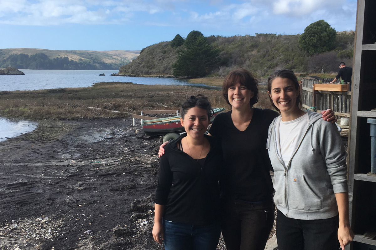 From left: Tessa Emmer, Avery Resor, and Catherine O'Hare of Salt Point Seaweed. (Photo courtesy Salt Point Seaweed)