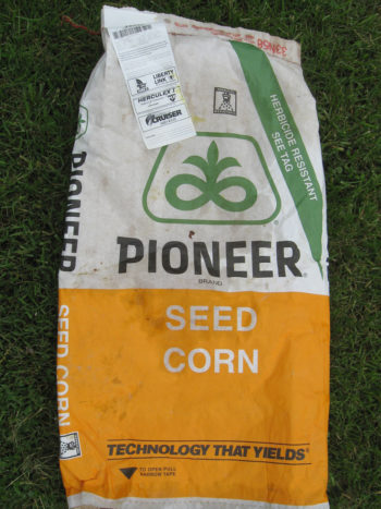 "Corn seed genetically engineered to withstand glyphosate spray. (Photo credit: <a href=""https://commons.wikimedia.org/wiki/File:GMO_corn_label_RoundUp_Liberty_Link_Herculex_I_Cruiser_Mid_Rate.jpg"">Orin Hargraves</a>)"
