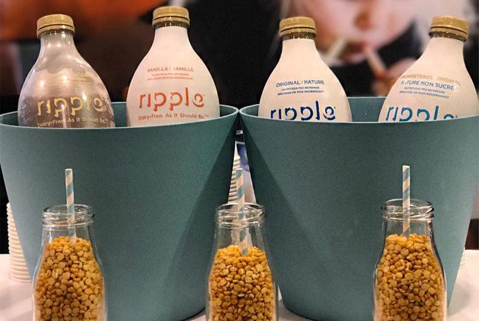 Your Pea Protein Primer | Civil Eats