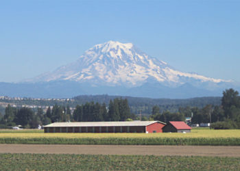 Mount Rainier and a farm in the foreground