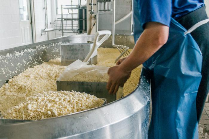 Mennonite farmers prepare cheese for Philabundance (photo courtesy of Philabundance)