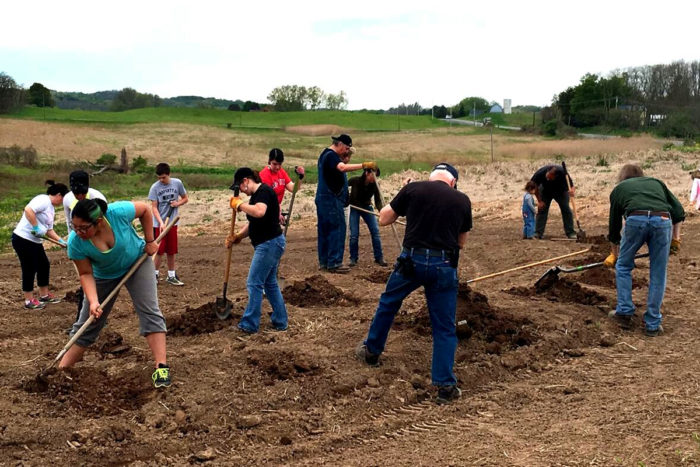 Planting Iroquois White Corn (photo credit: Friends of Ganondagan)