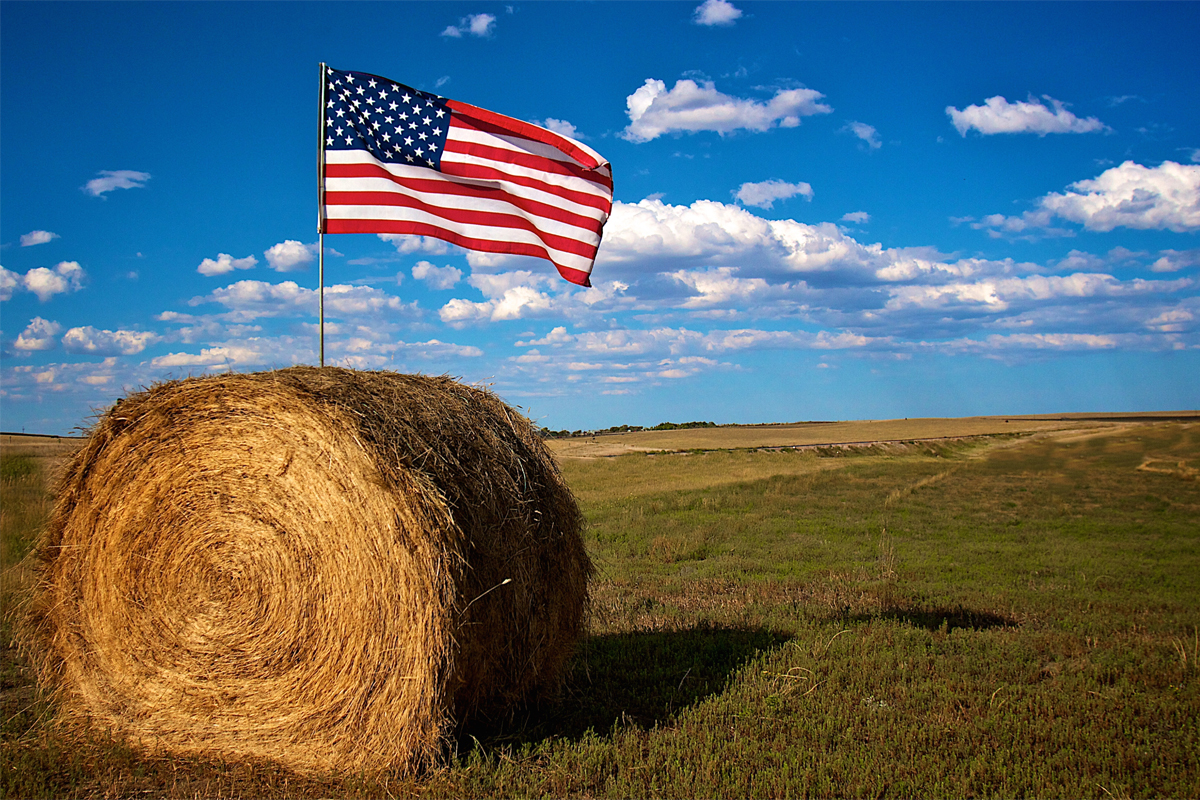 us flag in a hay bale