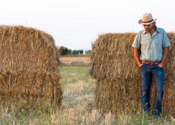 worried farmer by hay bales