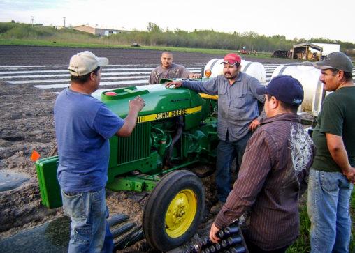 latino farmers talking