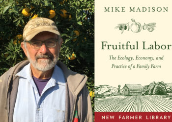 mike madison and book cover