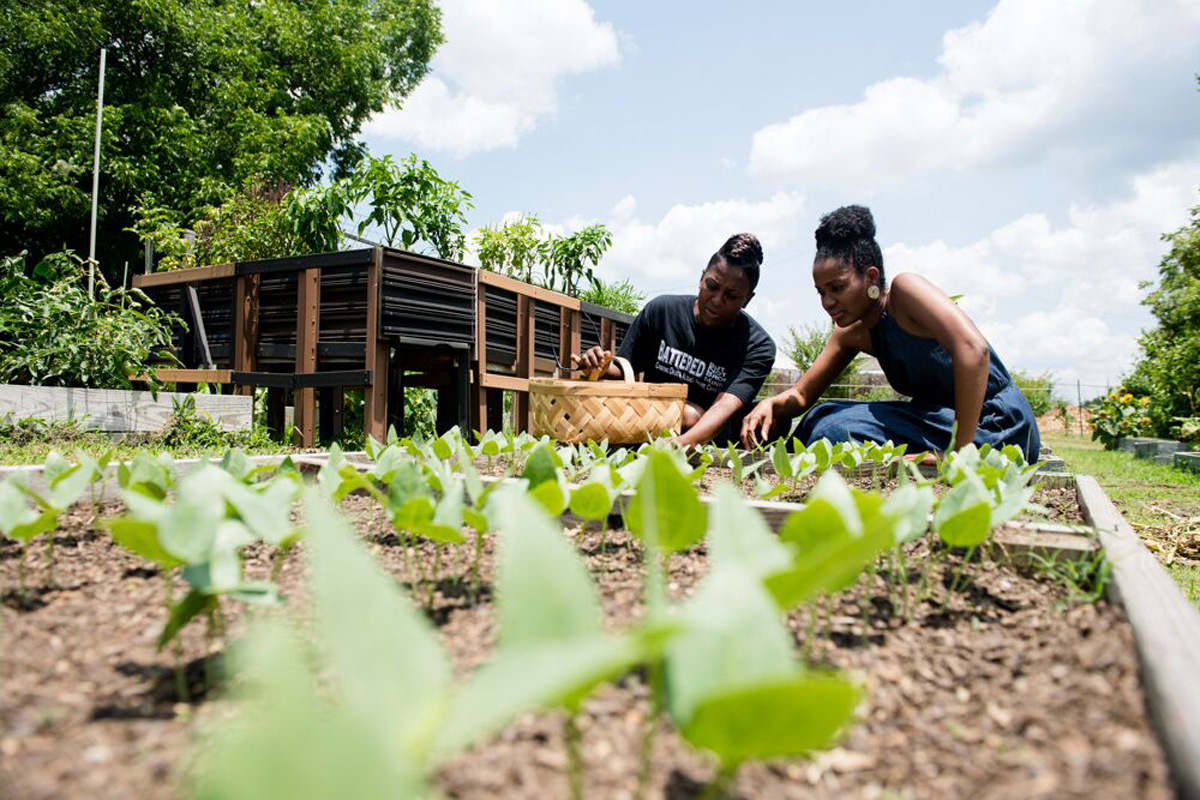 Jillian Hishaw Wants to Help Black Farmers Stay on Their Land ...