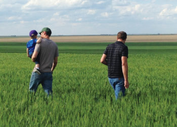Tim Raile (right) and his son Michael (left) holdling his own son, looking over fields they are transitioning to organic.