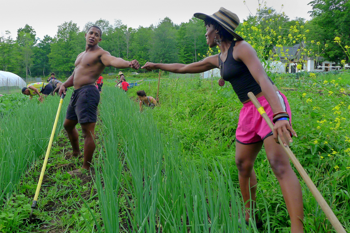 A Reparations Map for Farmers of Color May Help Right Historical Wrongs