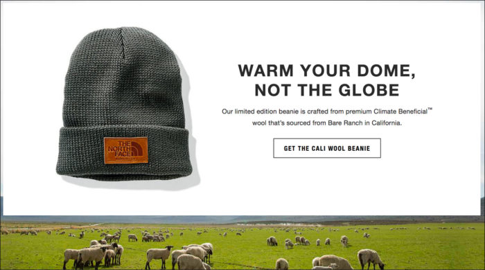 The North Face's promotion of the Cali Wool Beanie.