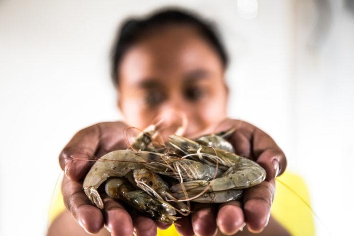 Melati holding shrimp. (Photo credit: Adrian Mulya/The Sustainable Seafood Alliance Indonesia)