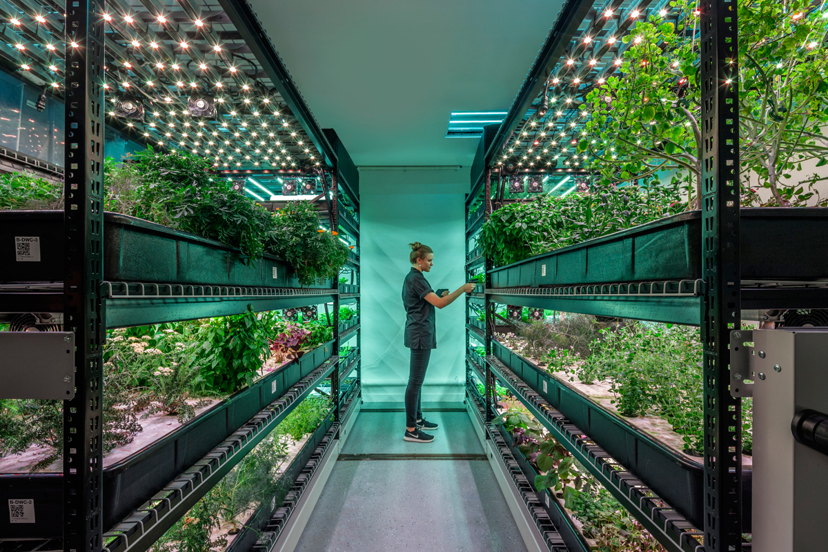Can Vertical Farms Reap Their Harvest It S Anyone S Bet