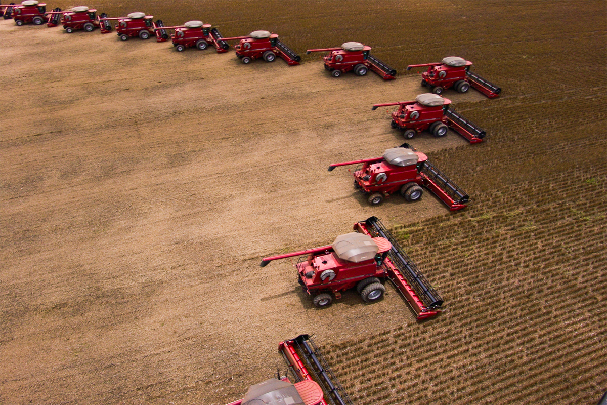 tractors harvesting a giant soy crop