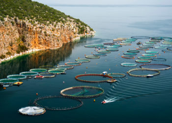 A fish farm off the coast of Greece. (Photo CC-licensed by Artur Rydzewski)