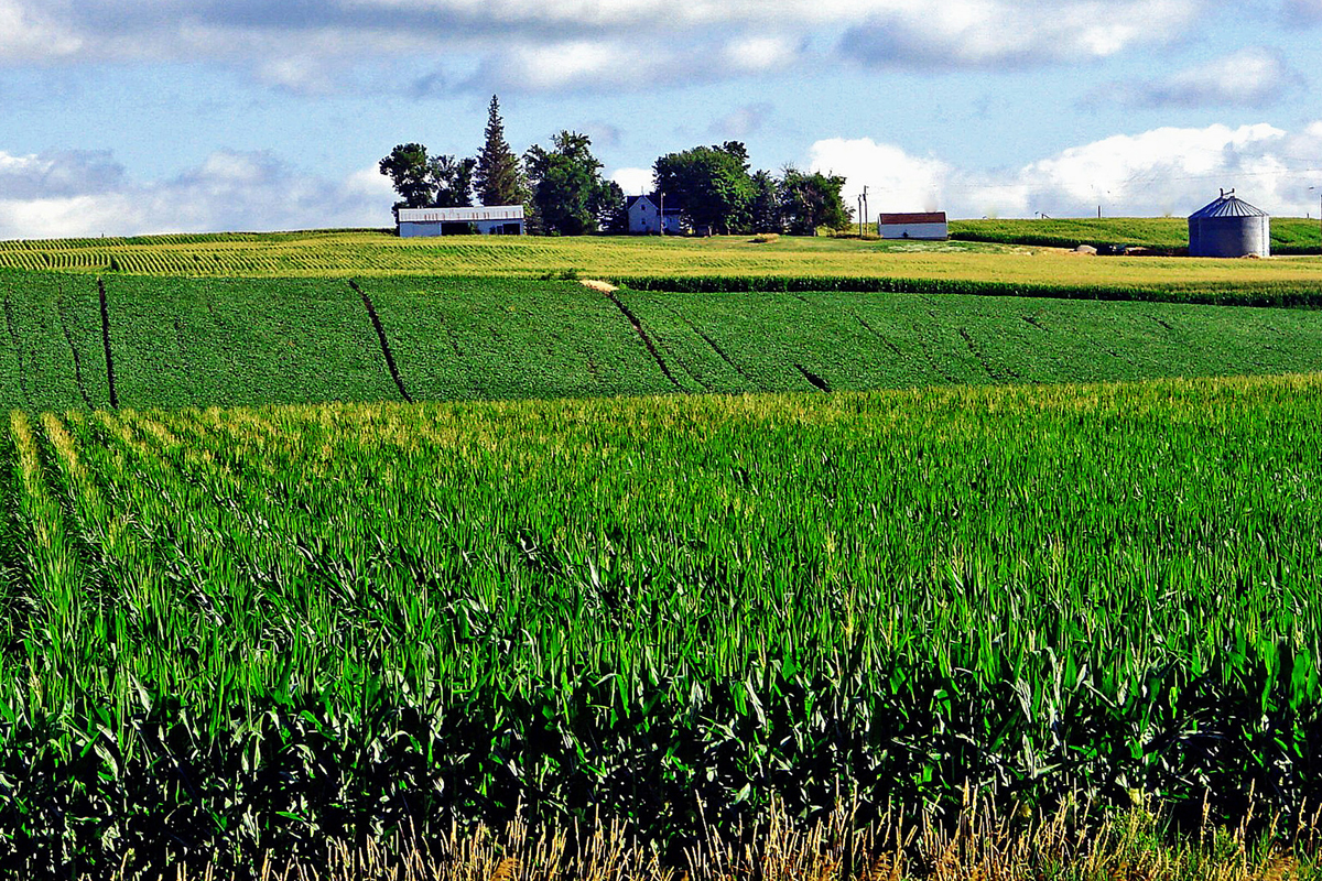Iowa Farm photo CC-licensed by Don Graham
