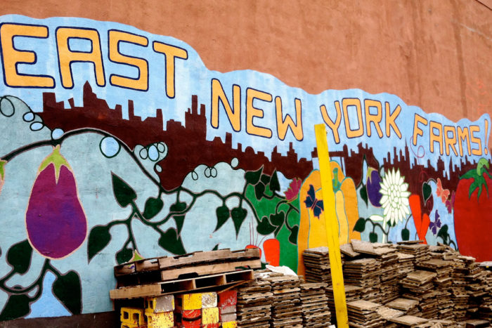 The mural at Brooklyn's East New York Farms! (Photo courtesy of Truelove Seeds)