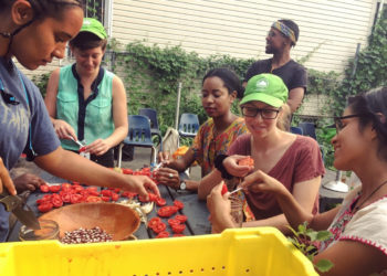 Participants at a Truelove Seeds seed-keeping workshop at Taqwa Community Farm in the Bronx. (Photo courtesy of Truelove Seeds)