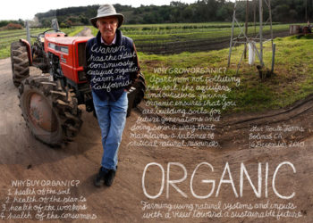 Warren Weber, profiled in The Lexicon of Food.