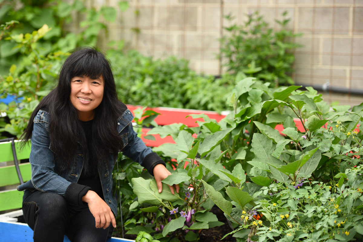 With Fresh Fruit And Vegetables Hard To Come By In Some Of The Cityu0027s Soup  Kitchens, Meei Ling Ng Plants Gardens To Provide Hyper Local Produce To The  ...