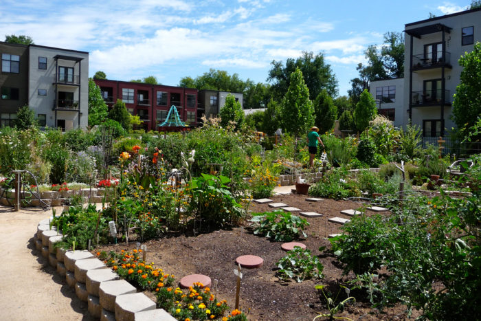 The Fremont Community Garden in Sacramento. (Photo CC-licensed by Annie & John)