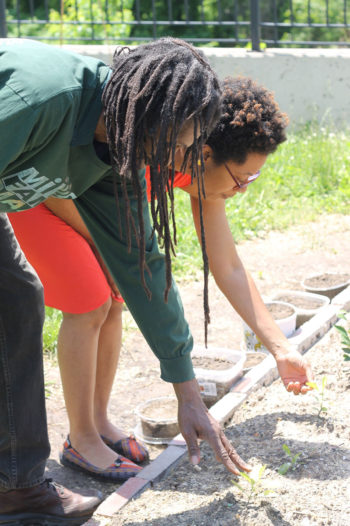 Ashanté Reese (right) and a planting volunteer check seedlings in a community garden at a public housing complex just outside Deanwood in May of 2014. (Photo credit: Ashanté Reese)
