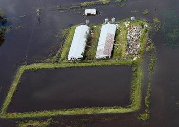 a damaged farm in north carolina after hurricane florence
