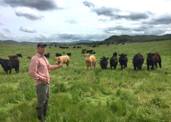 Farmer Kelly Mulville showing climate-smart ranching practices at Paicines Ranch in California. (Photo credit: CalCAN)