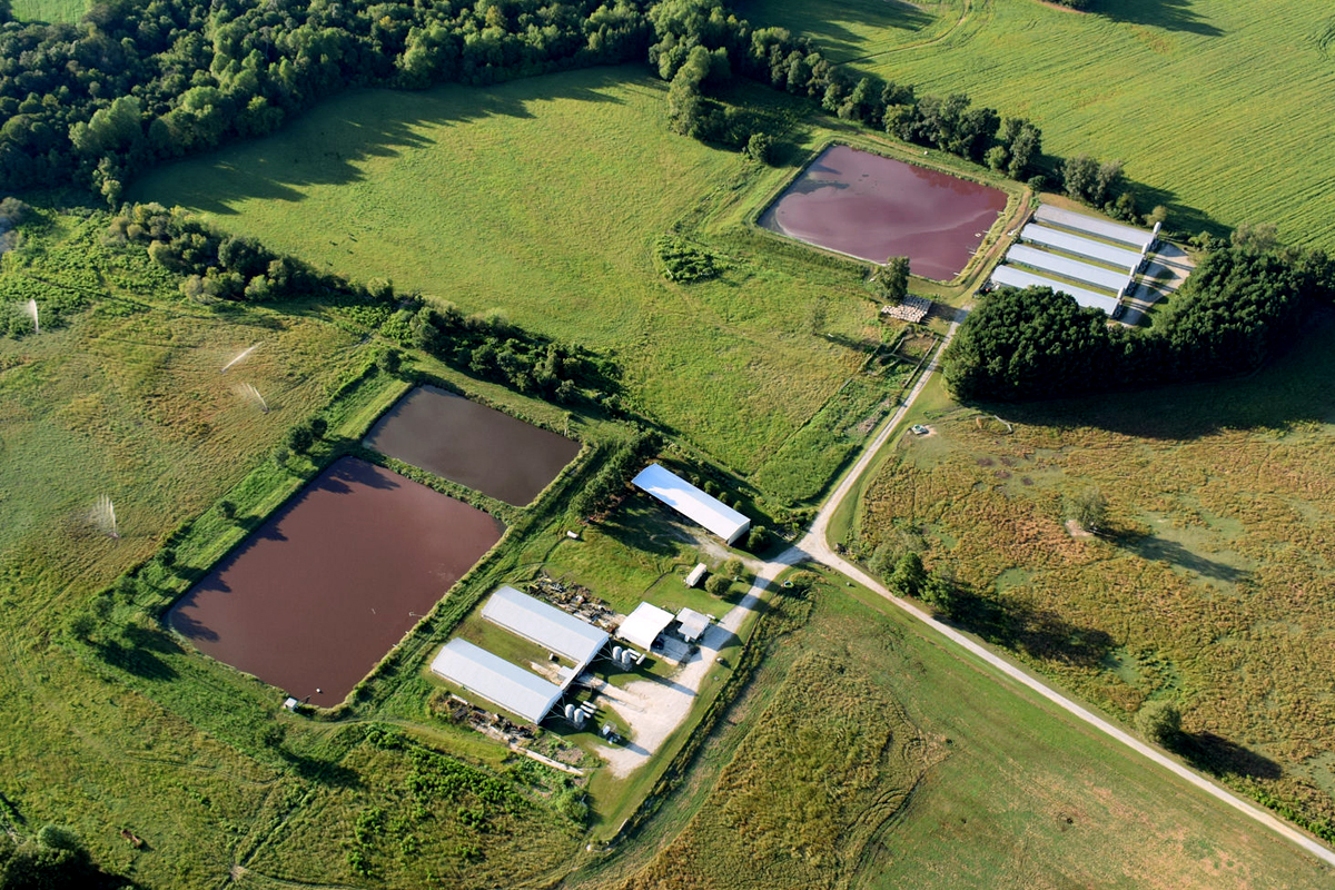 Lagoons outside a factory farm in North Carolina. Photo CC-licensed by Waterkeeper Alliance.