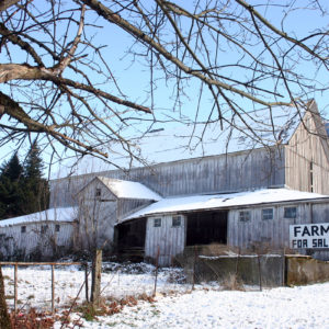 Dairy farm photo by Darinburt on Istockphoto.