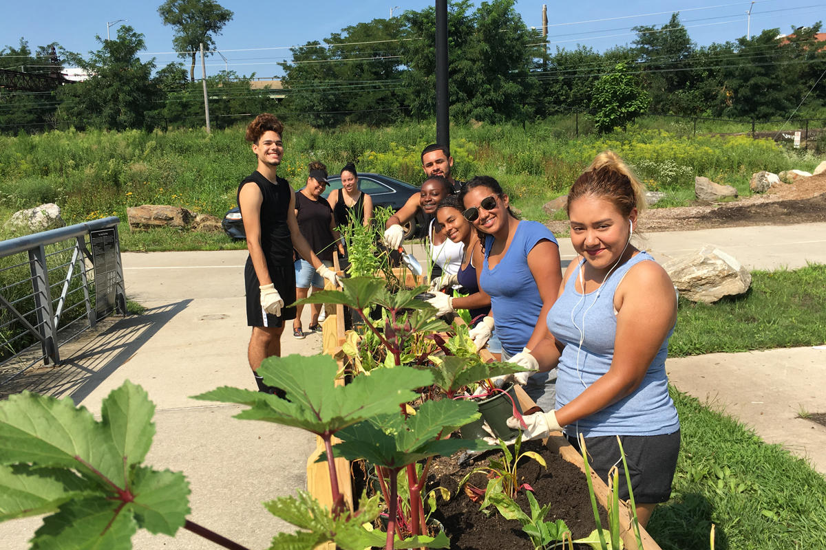 A team of farmers working at the Bronx Foodway as part of a program from Youth Ministries for Peace & Justice and New York City's Summer Youth Employment Program. (Photo by Nathan Hunter)