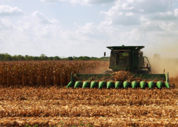 Farmer drives a combine in Midwest grain field to harvest mature corn. Photo by Phil Rozenski, Shiloh, IL
