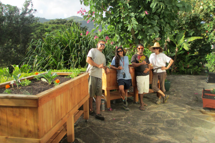 The team from Foodscapes Hawaii after installing a new garden in Manoa Valley, Honolulu. They designed and built the raised redwood planters and planted a variety of edibles in their custom organic soil mix.