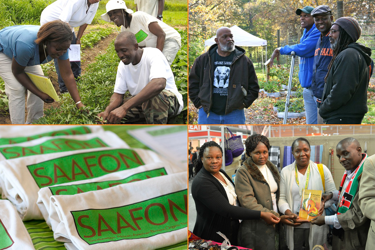 saafon black farmers support organization