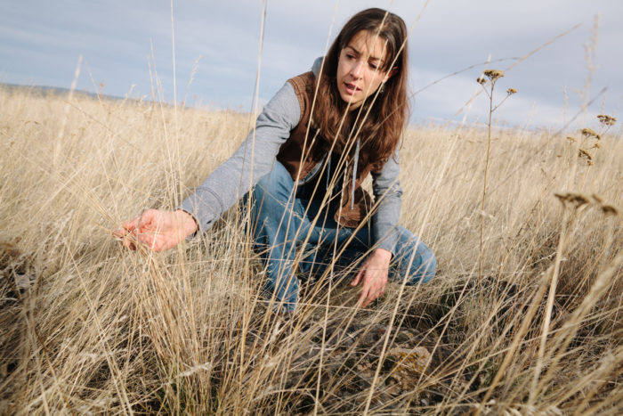 Cory Carman examining the grasses on her ranch. (photo © Nolan Calisch)